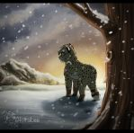 At A Land Of Snow.. by AkiiraLee