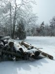 Foggy Winter053 by effing-stock