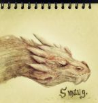 Smaug by Friendermen