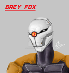 Grey Fox by MeistenHosen