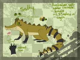 Salty reference sheet by xseashell