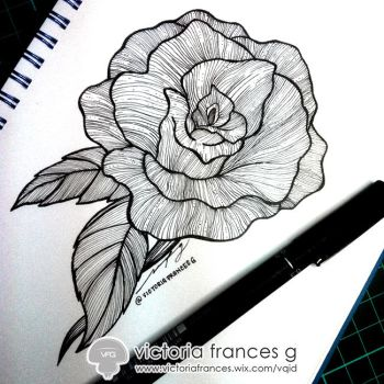 Rose Fantasia -  Sincere by victoriafg