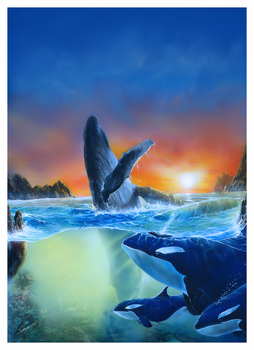 Whale and orca's by gfxglobe