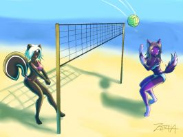 beach volley by zhuria