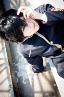 Hibari - Rise Up by stormyprince