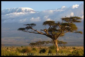 Kenya views 4 by francescotosi