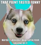 Retard huskey - Paint by Serpent1212