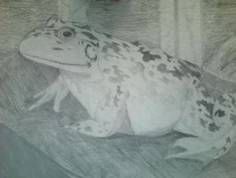 Bullfrog Project 2011 by EclecticWhiteRaven