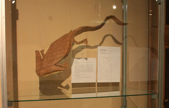 Diplocaulus displayed by PeteriDish