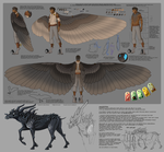 Gethin Wing Reference by GreekCeltic