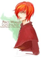 HP Percy Weasley by manira