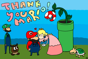 Thank You Mario by toader