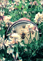 Broken time by Irrence