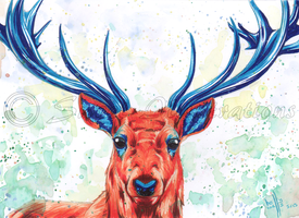 Stag Swag by SweetIllustrations