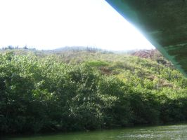 tropical river view 10 by CotyStock