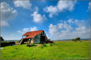 Rust Shack 220-10f by mym8rick
