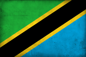 Grunge Flag of Tanzania by pnkrckr