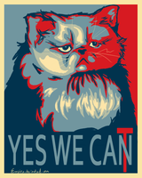 Yes We Cat by Aulef
