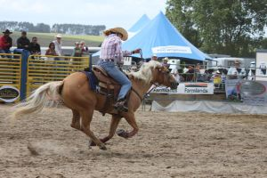 Taupo Rodeo 76 by Sooty-Bunnie