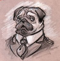 Dog Caricature Pug by Morpheus306