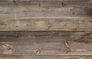 Old Wooden Planks Texture 06 by goodtextures