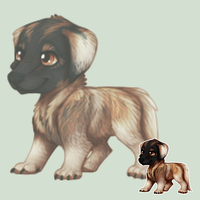Leonberger by o-Soulwings-o