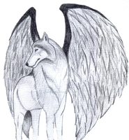 Dark Winged Wolf by ScarletRainxX