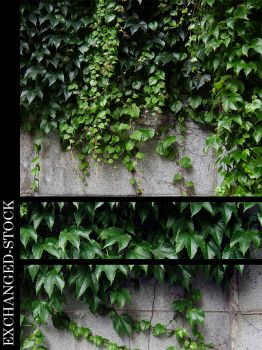 Green Sleeves Pack by exchanged-stock
