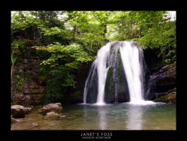 Janet's Foss by mortimea