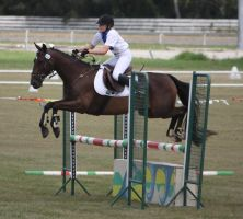STOCK Showjumping 494 by aussiegal7
