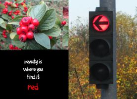 beauty is where you find it: red by MadameMimii