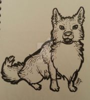 2 Pen Challenge_Border Collie by Skitcy