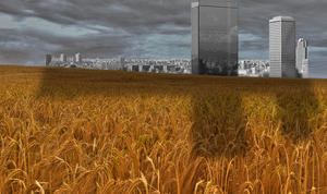 City In Le Field by pygoscelis