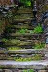 Old Stone Steps by GlassHouse-1