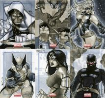 Marvel Universe Sktch Cards 12 by RichardCox