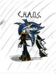 C.H.A.O.S. -Colored Uniform- by sonichero360