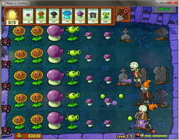 plants VS zombies setup by mewfairy