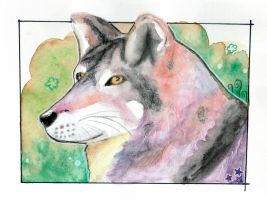 Wolf by Paintwick