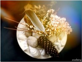 Gifts of Gaia... by ansdesign