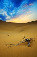 death desert II by AzozPhotography