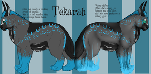 Tekarah Reference sheet re-designed. by Allixi