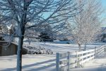 Frozen Fence by ferioflame