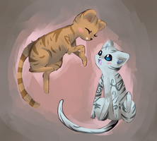 Cats playing by cartoonboyplz