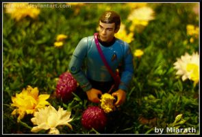 This doesn't look like the Enterprise ... by Miarath