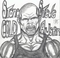 Stone Cold by reddfoxx29