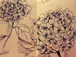 Old little drawing (flowers) by Geostigma30