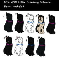 GSD Puppy adoption by ForeignOakKennels