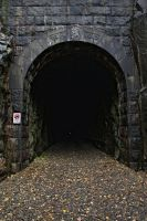 abandoned railroad tunnel 3 by werneri