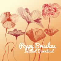 Poppy Brushes by corelila