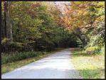 Vermont Roads by funygirl38